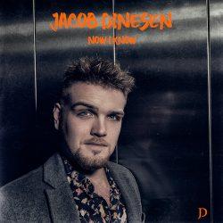 Jacob Dinesen low